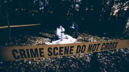 master-online-criminologia-y-criminalistica_amp_primaria_1_1560502992